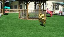 playground-440
